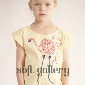 soft gallery���Ҷ���